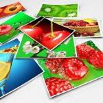photo paper new